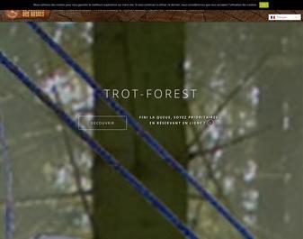 le royaume des arbres parcours aventure